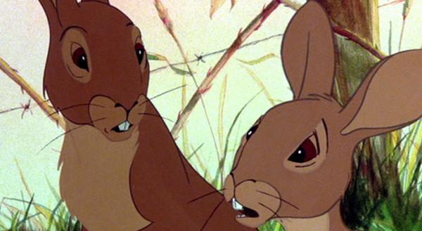 hazel fiver rabbits top nerdy 10