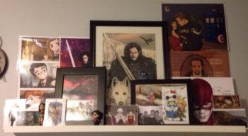 nerdy shelves