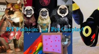 Pet Cosplay