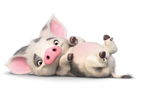Favorite Pigs