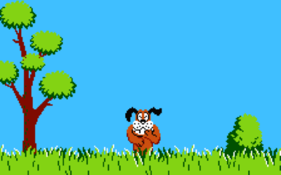 duck hunt games